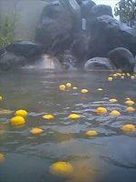 梅の香温泉 0806